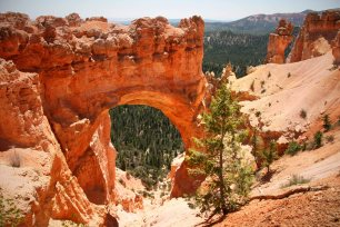 Bryce Canyon Nationalpark. Foto: Oliver Heider