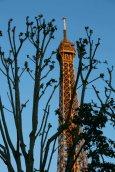 Manchmal versteckt sich der 324 Meter hohe Eiffelturm. Foto: Oliver Heider