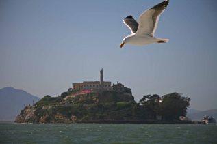 Ausblick auf Alcatraz während einer Bootstour. Foto: Oliver Heider