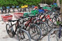 Räder auf La Digue. Foto: Oliver Heider