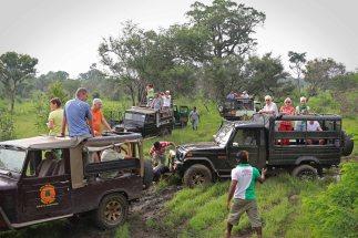 Jeef-Safari im Hurulu Eco Park. Foto: Oliver Heider