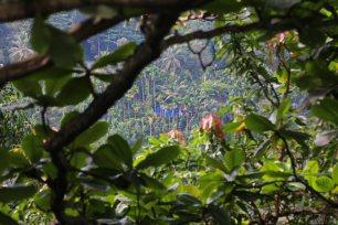 Landesinnere von Sri Lanka. Foto: Oliver Heider