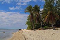 Ein Strand auf Cayman Brac. Foto: Oliver Heider