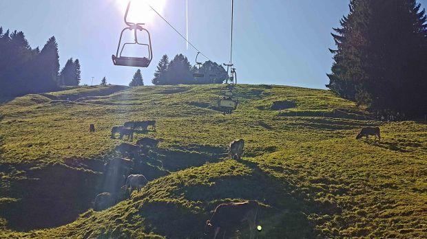 Alpsee Bergwelt Sessellift Sesselbahn