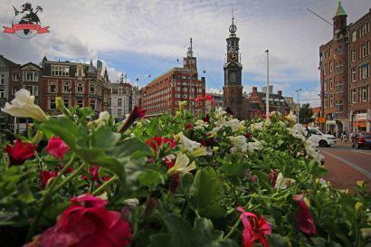 Bloemenmarkt Blumenmarkt Amsterdam Holland Niederlande
