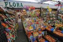 niederlande-amsterdam-bloemenmarkt2