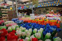 niederlande-amsterdam-bloemenmarkt4