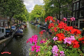 Gracht Grachten Amsterdam Holland Niederlande