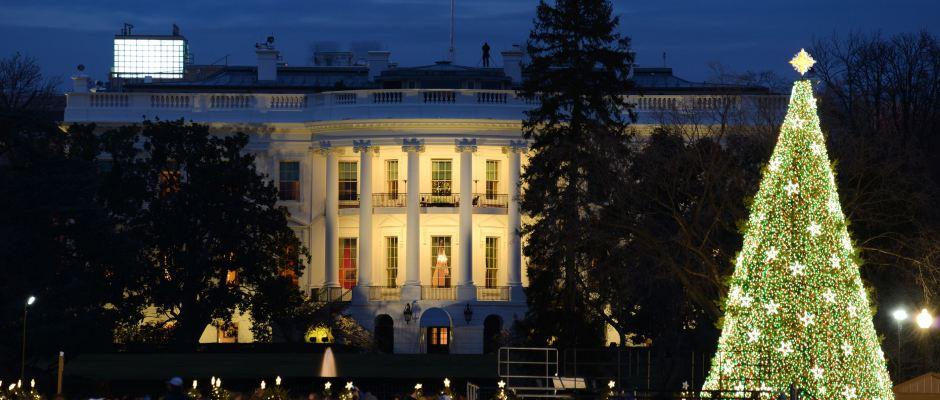 Der Weihnachtsbaum vor dem Weißen Haus in Washington. Foto: Destination DC