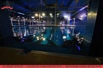 Eine Glasbodenboot-Fahrt über das Wasser des Aquariums in der Dubai Mall. Foto: Oliver Heider