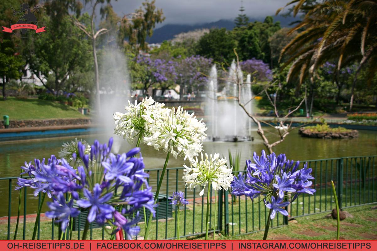 047_Funchal_02