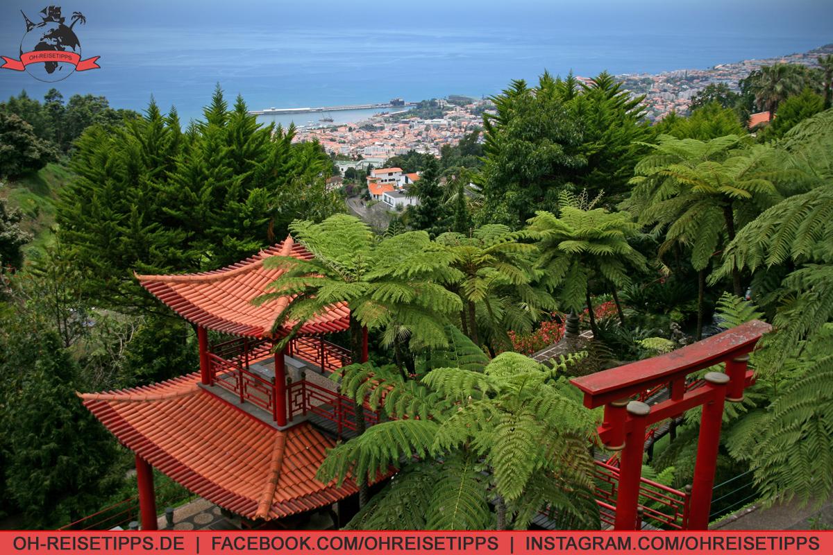 047_Funchal_06