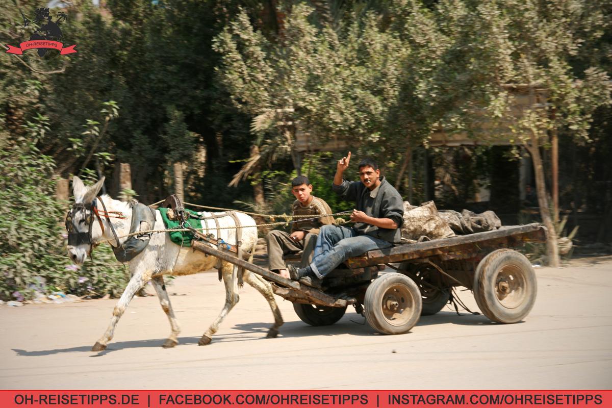 25_Kairo_06