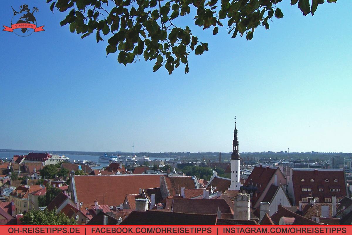 35_Tallinn_01