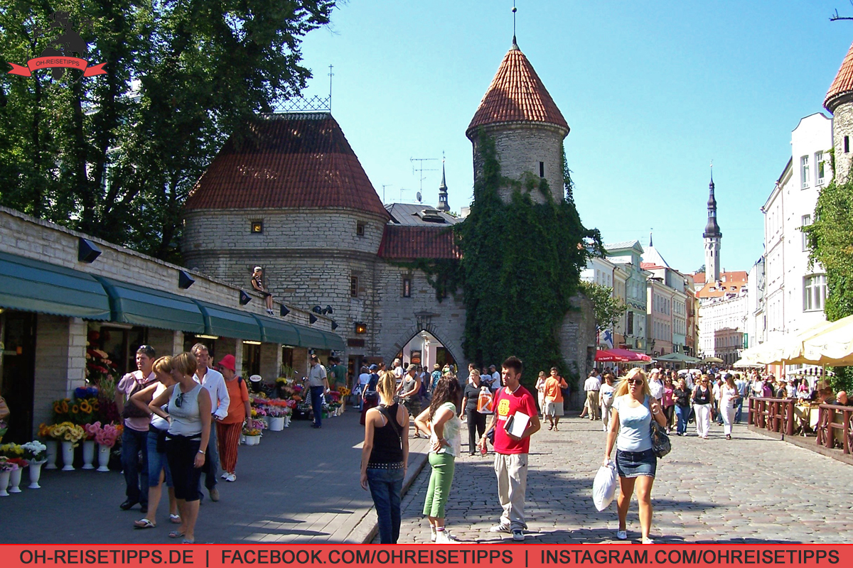 35_Tallinn_06